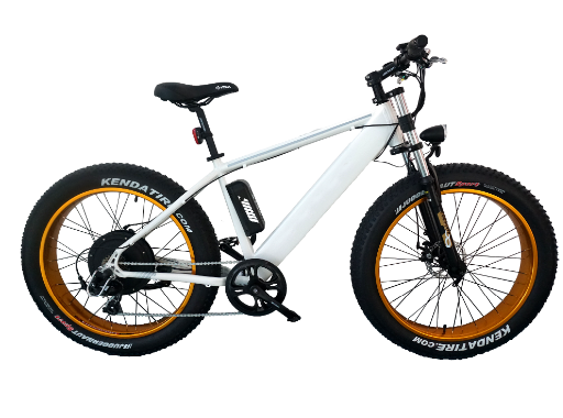 Big power motorized bicycle PAS system electric moped Latest hybrid bike