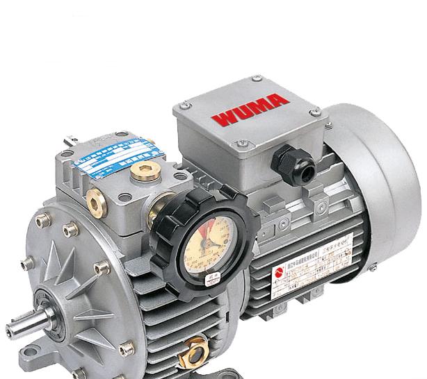 Aluminum casting speed motor variator with speed reducer