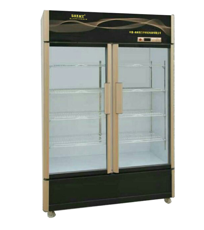 Side By Double Glass Door Upright Display Freezers For Drinks Or Beverage With Customized Ad
