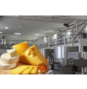 Mozzarella, Hallomi Cheese (Butter) Production Line