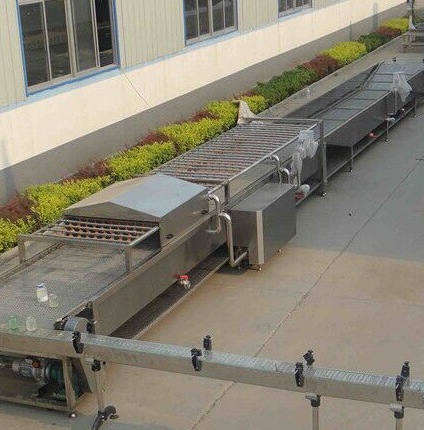 Canned Vegetable/Fruit Production Line