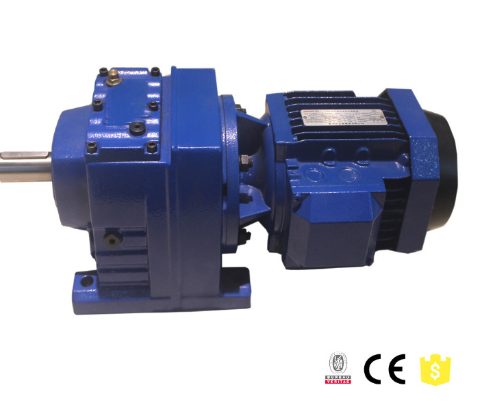 R Series Gear Motor With IEC Adapter Flange