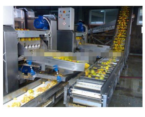 Fruit Juice Product Manufacturing Plant