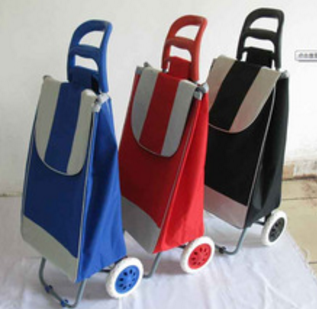 trolley shopping bag vegetable RH-FT03