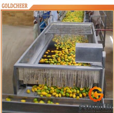 Professional Manufacture juice mango pulp production line