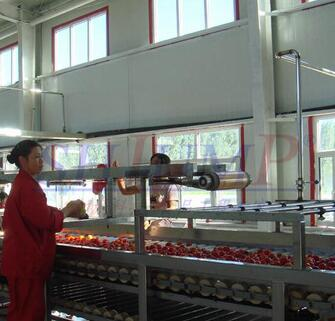 vegetable fruit juicer packaging machine / extractor machine
