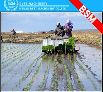 rice seedling transplanter/manual rice seeder