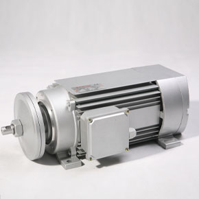 IEC series MSV/MYV series