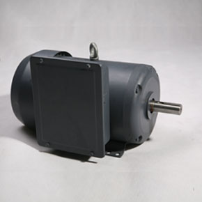 NEMA motors SLF series