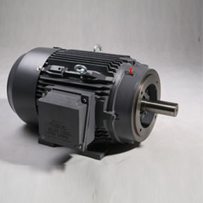 NEMA motors TFC/TXC series