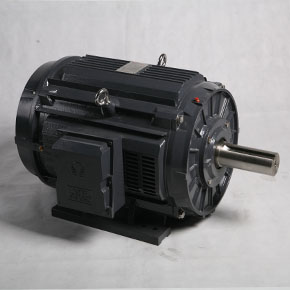 NEMA motors  TDC series