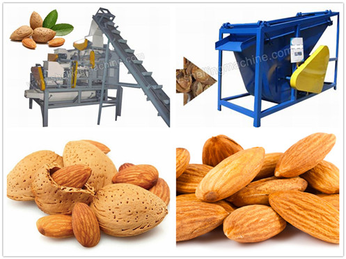 (1000 kg/h) Almond Cracking & Separating Line