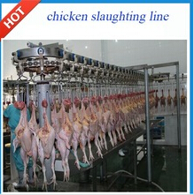 chicken slaughtering equipment line for poultry slaughterhouse killing