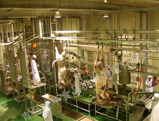 Carcass processing series
