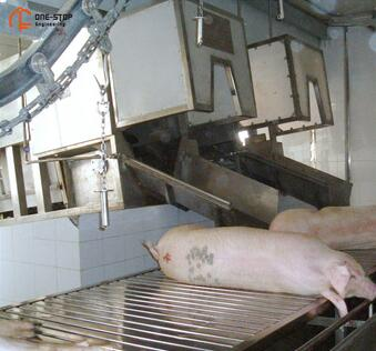 Turnkey Pig Slaughter Machine For Meat Abattoir