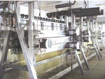 Chicken poultry slaughter machine and equipment