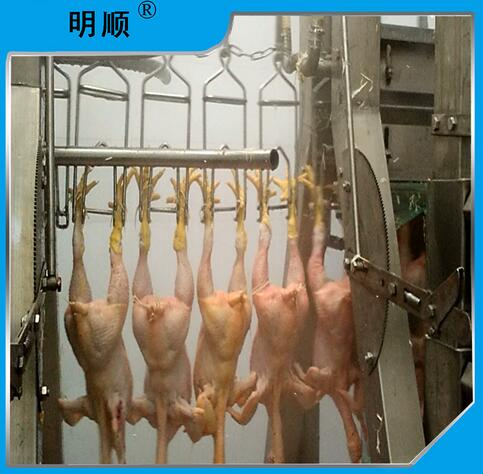 Meat Chicken Slaughtering Line
