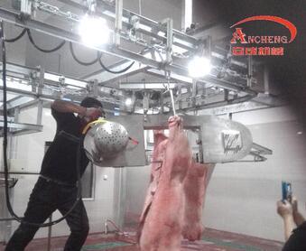 Pig Slaughter equipment line for Slaughterhouse