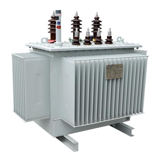 Ohsas18001-2007 10kv Two-winding Oil-Immersed Distribution Transformer