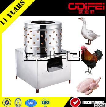 Stainless steel commercial chicken slaughtering equipment