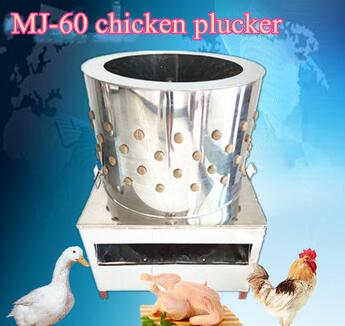 Poultry slaughtering house chicken machine Mujia 60 model chicken plucker