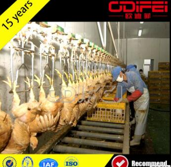 Slaughterhouse Chicken Head Cutter poultry processing slaughtering equipment