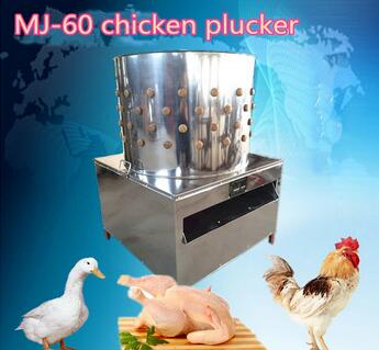 poultry slaughtering equipment used chicken feather