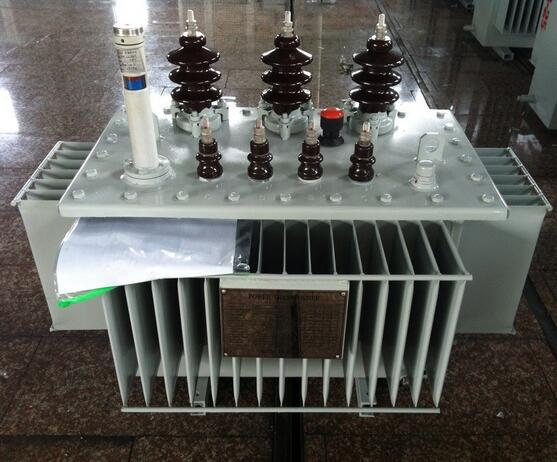 11kv Three Phase Power Frequency Oil Immersed Distribution Transformer