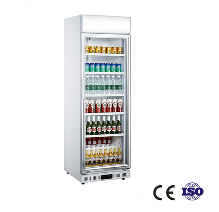 Single-Temperature Upright Display Chiller