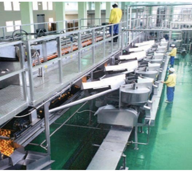 High Quality Orange Juice Production Line