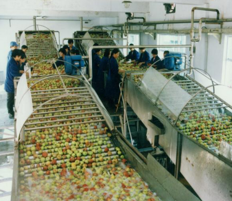 Complete Production Line for Concentrate Apple Juice with Factory Price