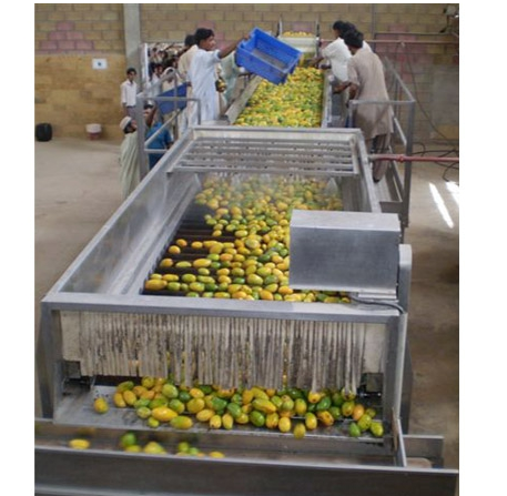 High Quality Mango Juice Processing Line