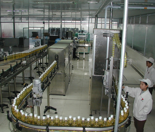 Commercial Fruit Juice Processing Line