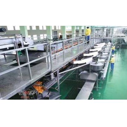 Automatic Orange Juice Production Line
