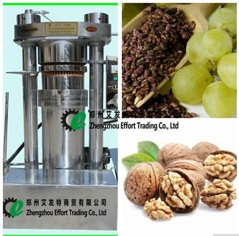 Competitive cold press oil machine sesamegrape seeds