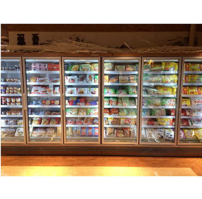 Supermarket Upright Display Showcase Freezer