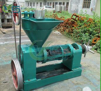 Oil pressing machine Popular selling all over the world