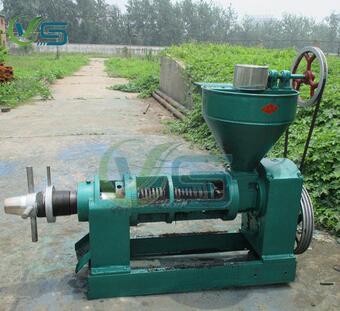 olive oil cold press machine hot sale in Africa