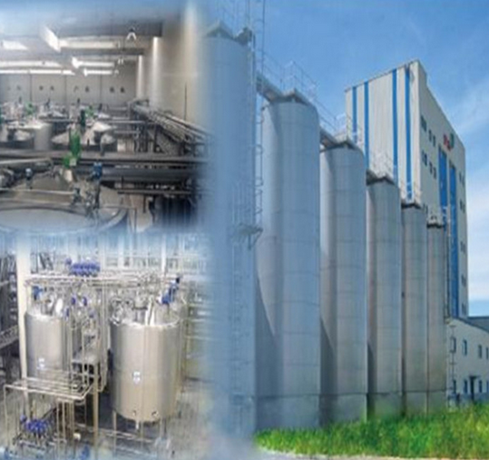 Full Automatic Milk Production Line