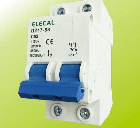 DZ47-63 2P Series Manual Type Low Voltage Mini Circuit Breaker