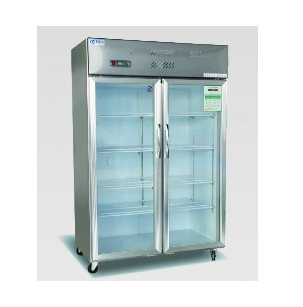 Series Cupboard Freezer wholesale