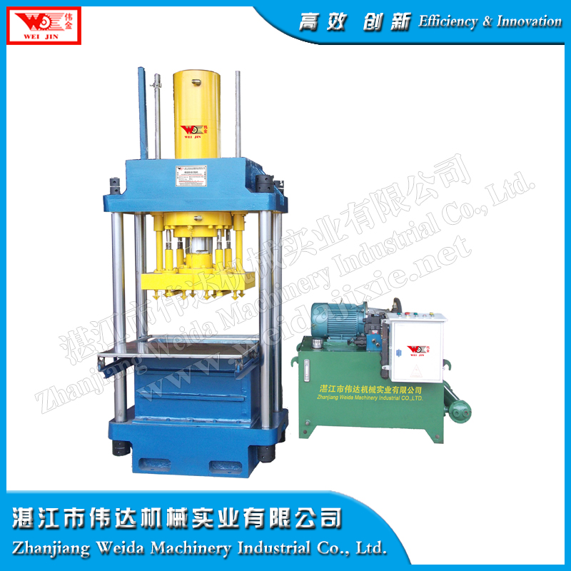 WEIJIN Dry Rubber Hydraulic Press
