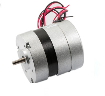 Brushless Electric Motors with Driver Inside (FXD57BL-1220-001)