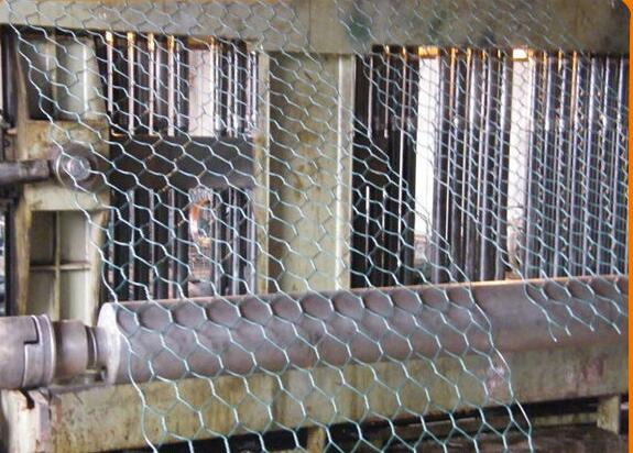 hot dipped galvanized woven animal protection hexagonal mesh