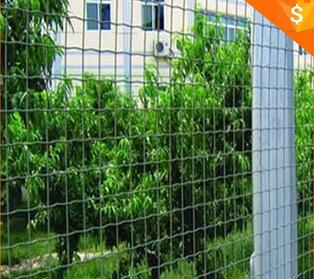Holland wire mesh fence/welded dutch fence rolled wire mesh fence
