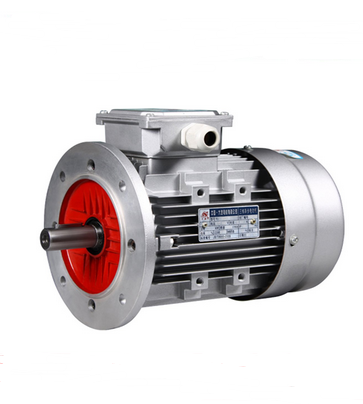 (Y2, YE2, YE3) Series Three Phase Aluminum Body Electrical Motor