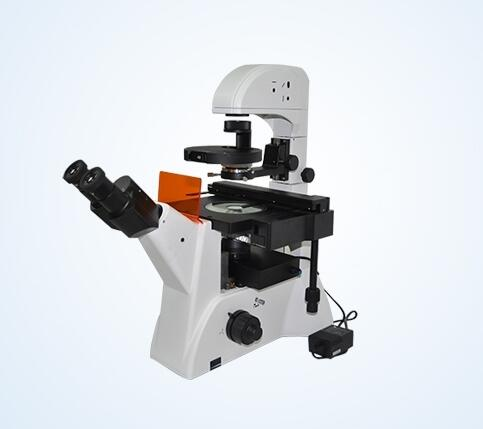 MF52-LED inverted fluorescence microscope equipment with blue, green and UV