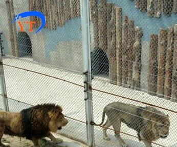 China woven mesh,stainless steel wire mesh for zoo fence mesh