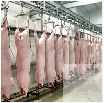 pig bleeding conveyor for large slaughterhouse