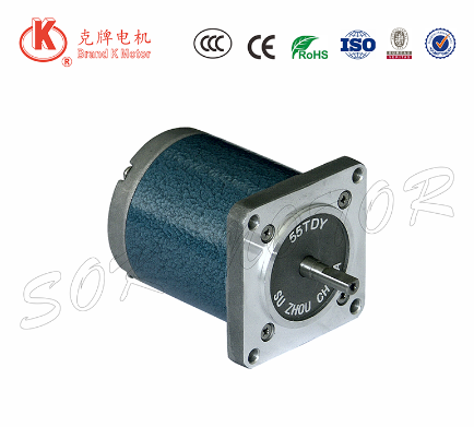 12V 24V 50/60hz 55mm three phase permanent magnet cw ccw ac synchronous motor